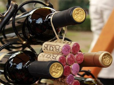 montenegro private tours wine tasting