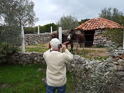 kotor private tours countryside